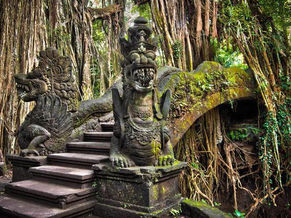 Bali Sangeh Monkey Forest Sugibali Tours Bali Best